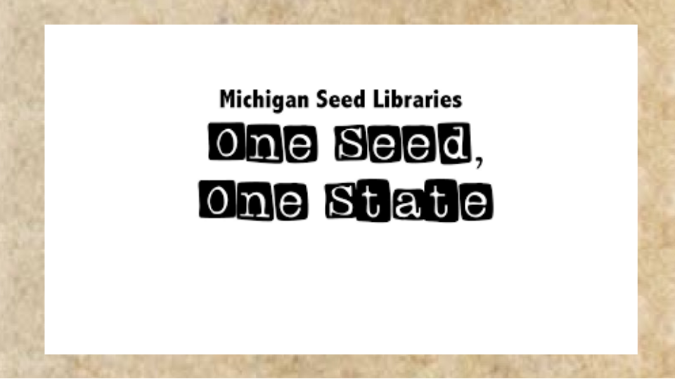 One Seed One State